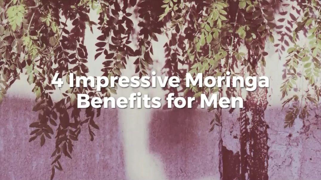 Moringa Health Benefits For Men: Top 4 health benefits