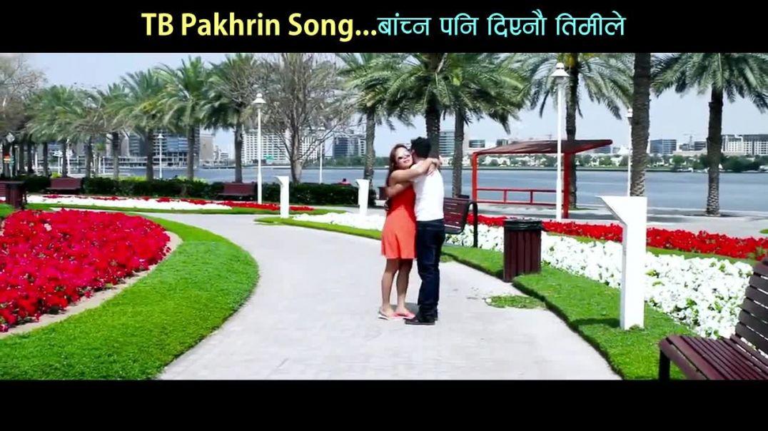 Bachna Pani Diyenau Timile l Nepali Sentimental Modern Song l TB Pakhrin