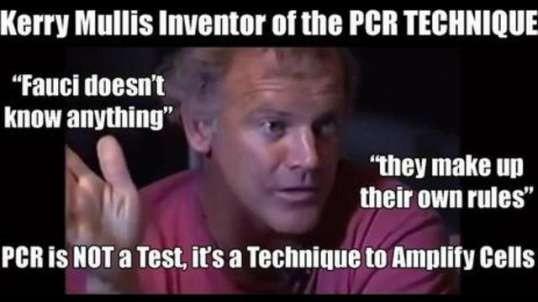 Kary Mullis PCR TECHNIQUE Inventor: People are Misinterpreting It. It is NOT for Diagnostics.